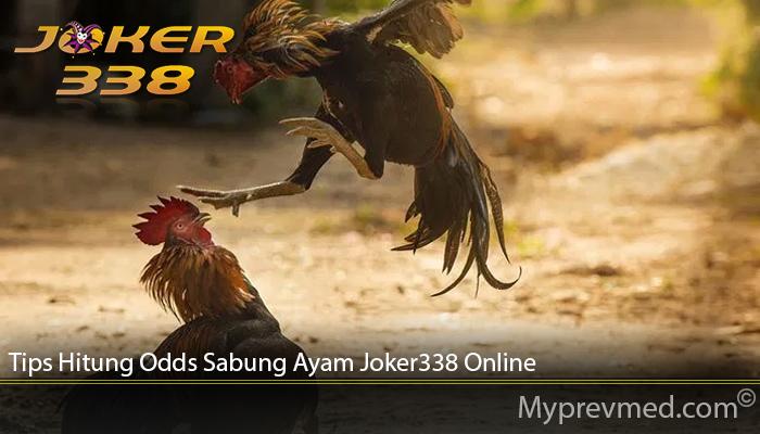 Tips Hitung Odds Sabung Ayam Joker338 Online