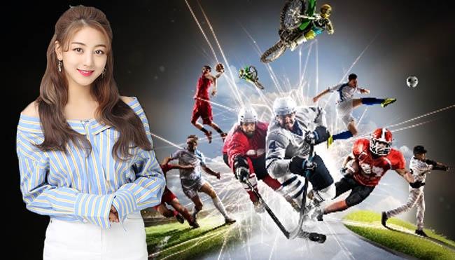 Hobby Bermain Judi Sportsbook Datangkan Keuntungan
